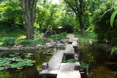 Jardin botanique de Belgrade