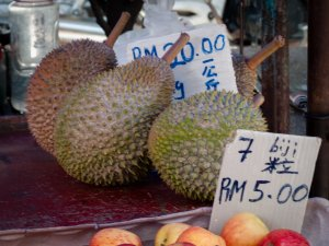 Durian, fruit malaisien