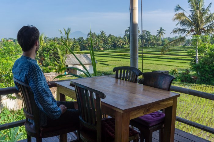 Rizières à Ubud, Bali, Indonésie
