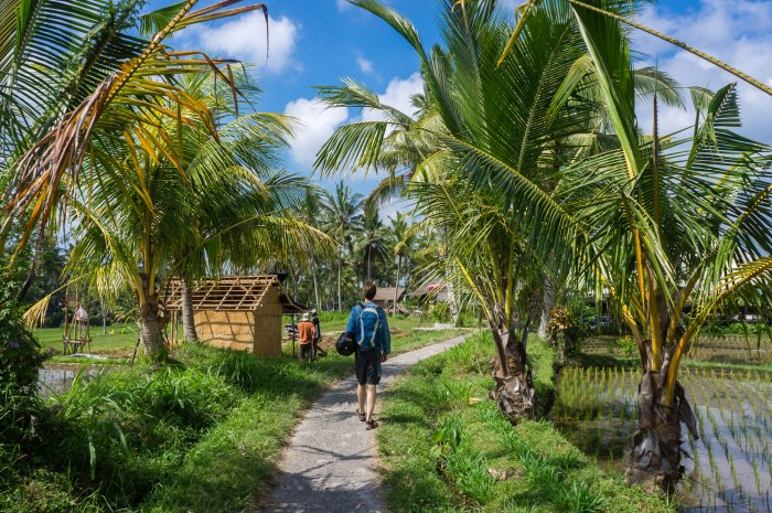 Balade à Ubud, Bali