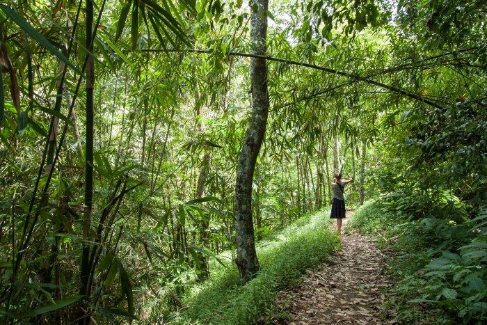 Randonnée à Munduk, Bali