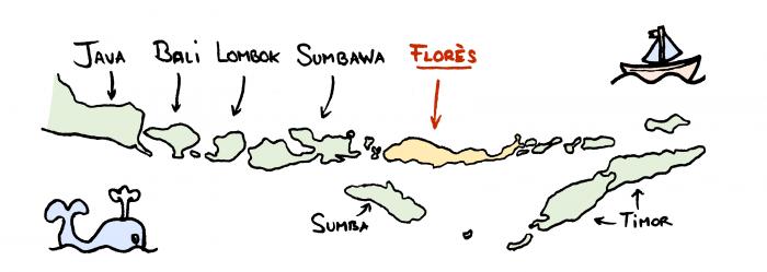 Carte de Florès et les petites îles de la Sonde