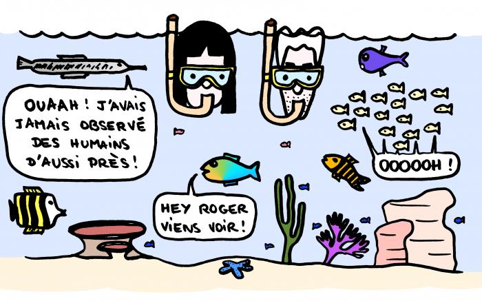 Dessin : Snorkeling à Gili Air
