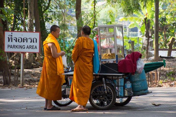 Moines au Wat Umong, Chiang Mai