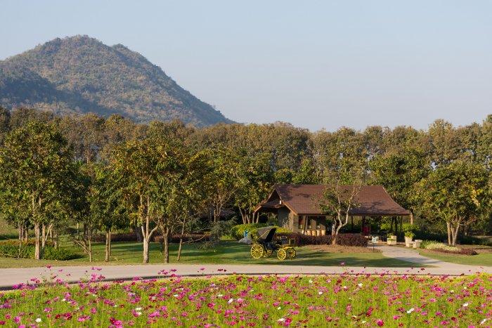 Singha park, Chiang Rai