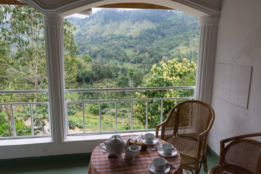 La terrasse du Morning Mist, Ella, Sri Lanka