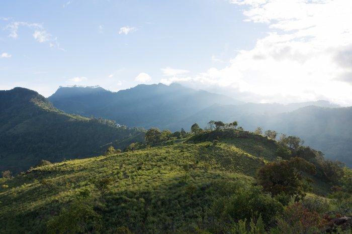Montagnes sri lankaises, Ella, Sri Lanka