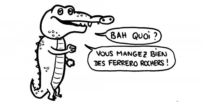 Dessin : crocodile qui mange des cailloux