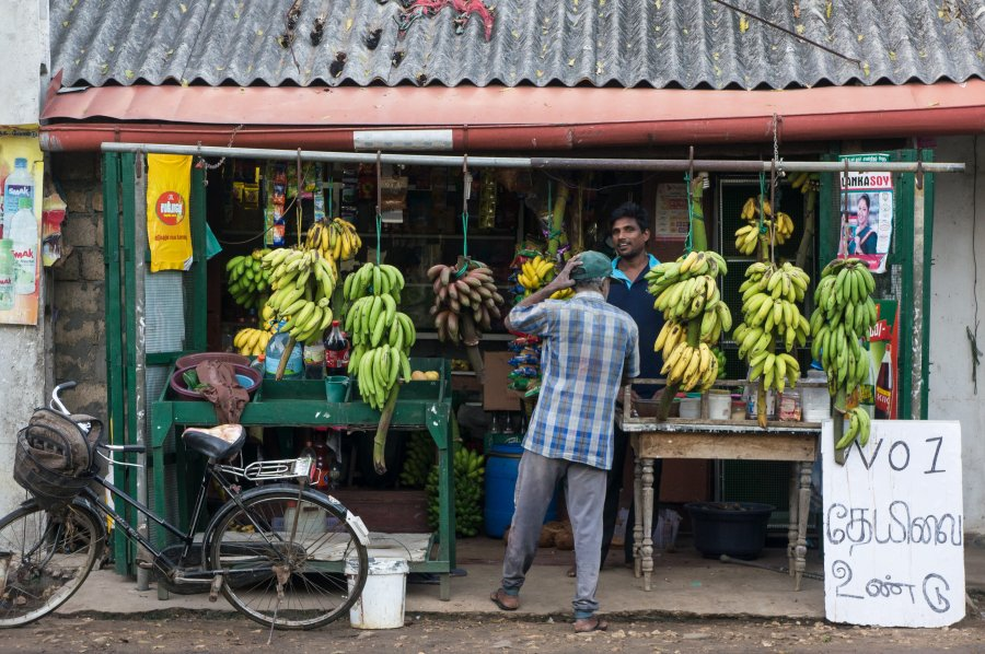 Marchand de fruits à Jaffna