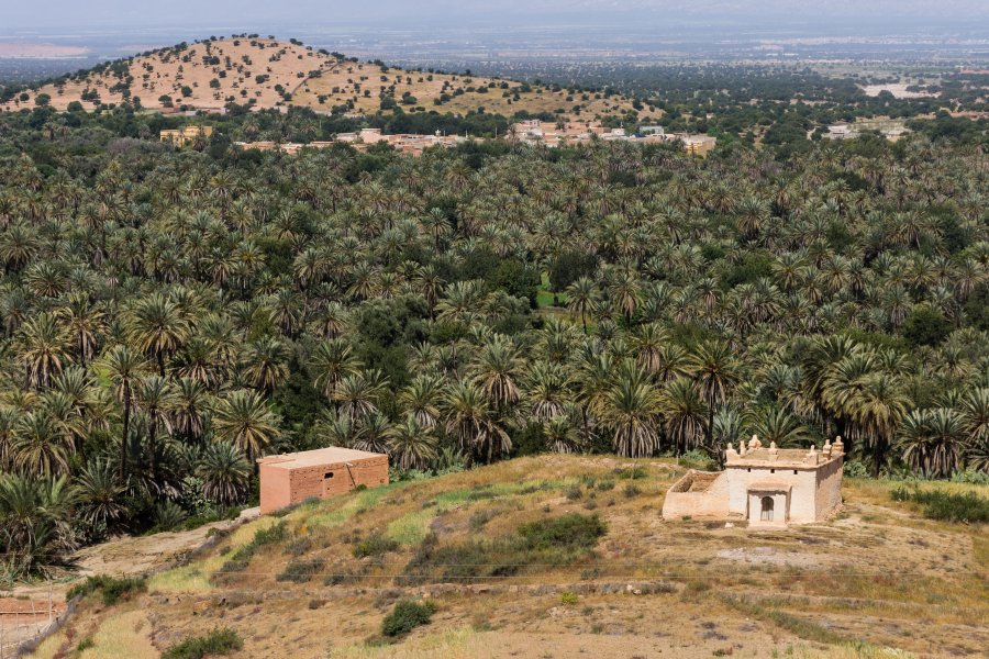Oasis de Tiout, Taroudant, Maroc