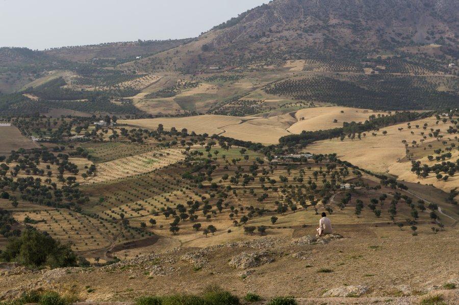 Tombeaux des Mérinides, colline El Qolla, Fès