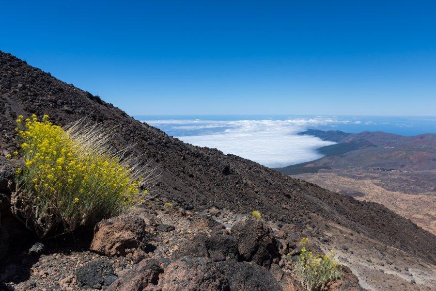 Ascension du volcan Teide, Tenerife