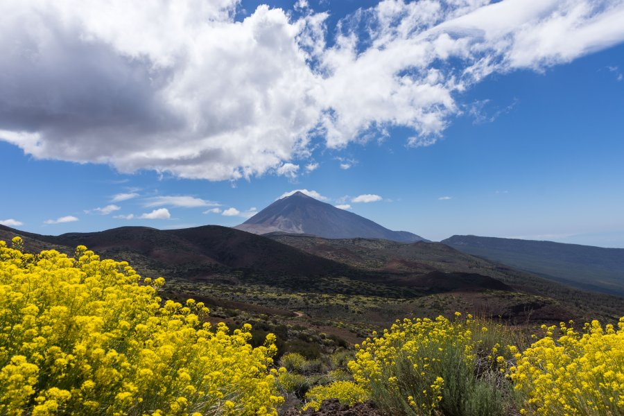 Volcan El Teide, Tenerife, Canaries