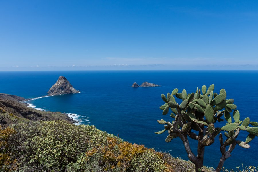 Roques de Anaga, Tenerife