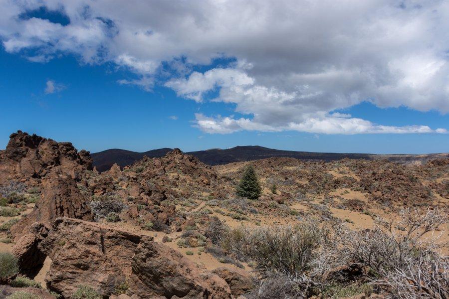 Caldera de Las Cañadas, Tenerife