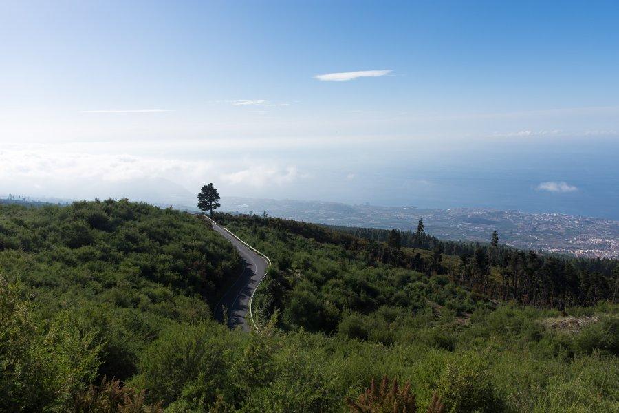 Chemin vers le Teide, Tenerife