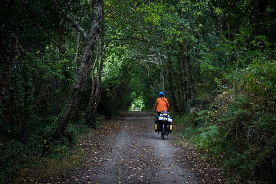 Vélo dans la forêt en Bretagne