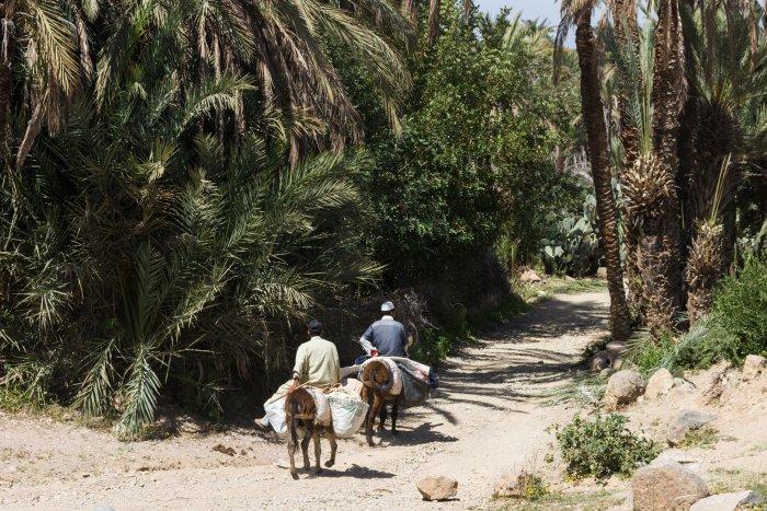 Taroudant, Maroc