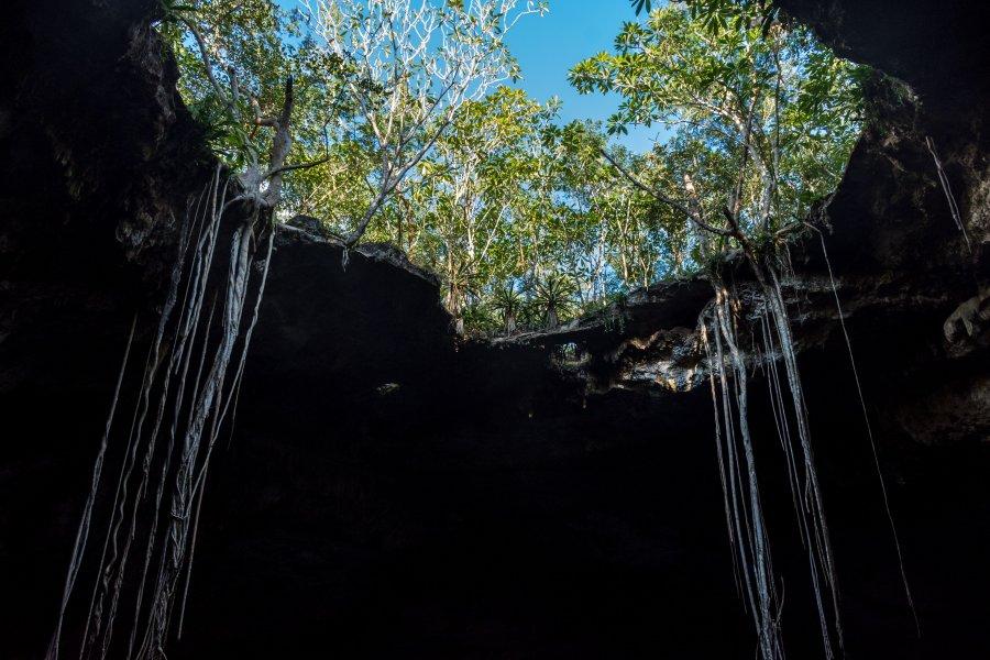 Cenote Noh-Mozon, Yucatán