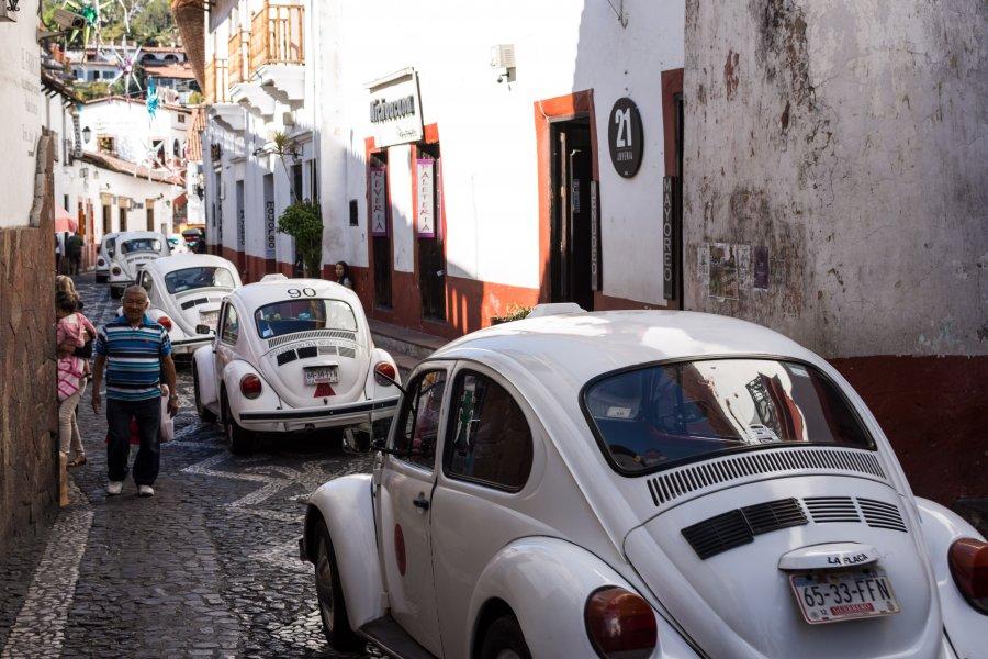 Coccinelle à Taxco, Mexique