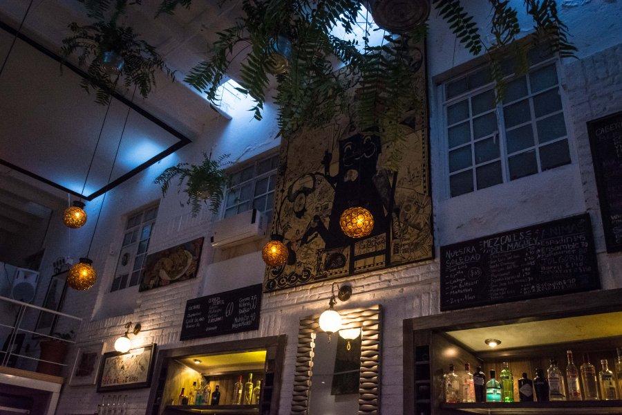 Cocina Bar Agavero, Oaxaca
