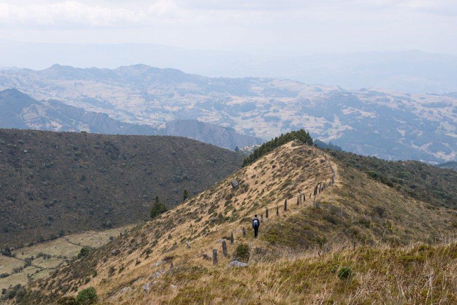Paramo de Oceta, Colombie