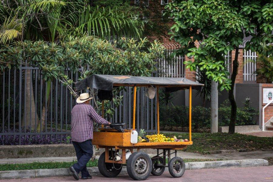 Vendeur ambulant de fruits et légumes