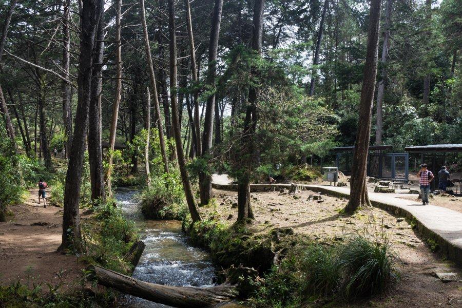 Parque Arvi, Medellín, Colombie