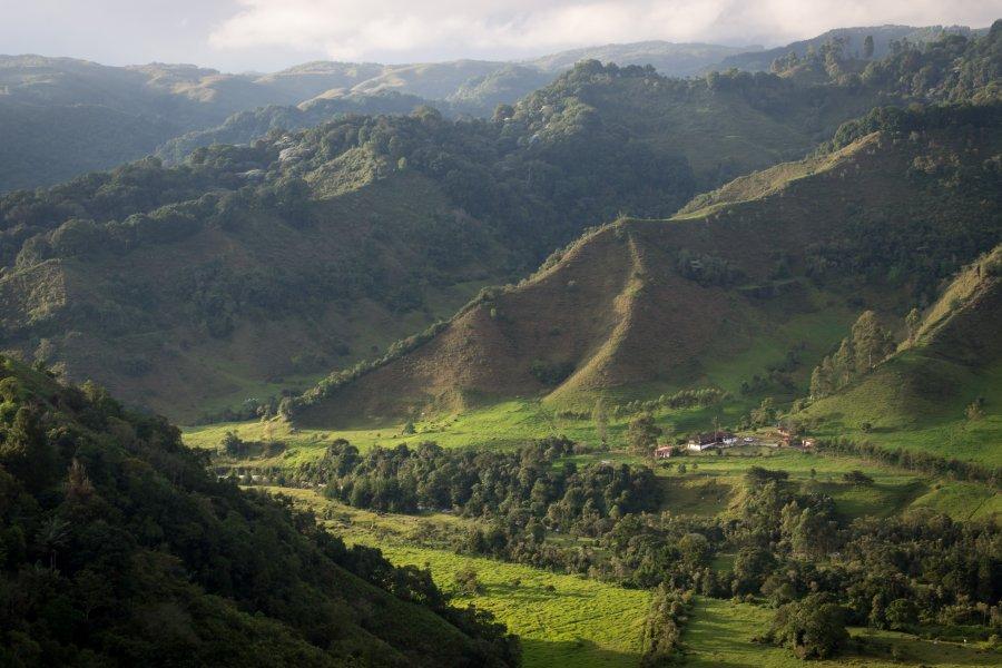 Mirador de Salento, Colombie