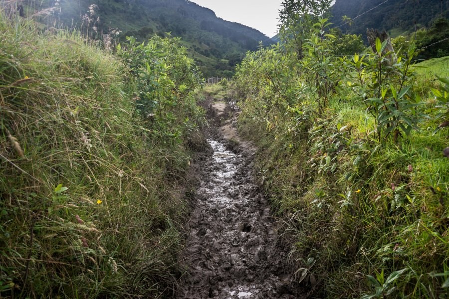 Randonnée boueuse à Salento, Colombie