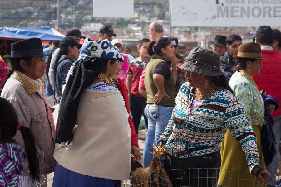 Marché aux animaux d'Otavalo, Équateur