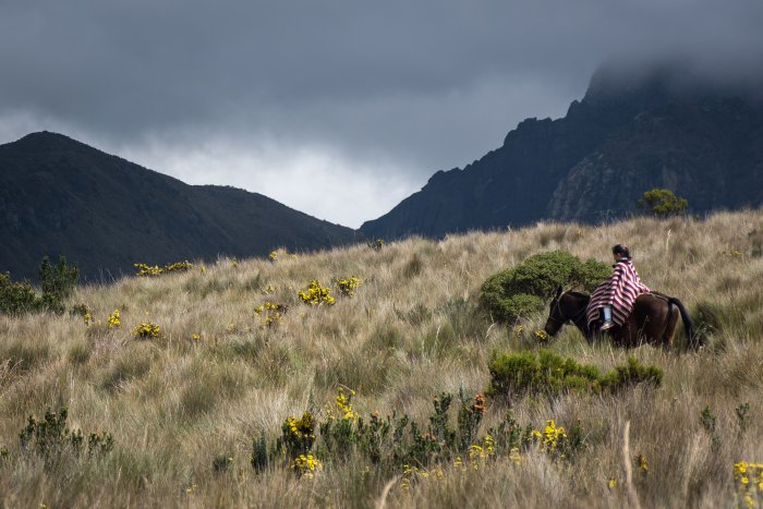 Volcan Pichincha, Quito, Équateur