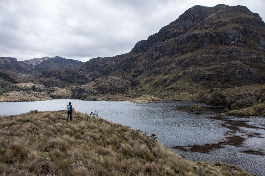 Parc national El Cajas, Équateur