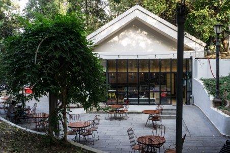 Café à Tbilissi, Géorgie