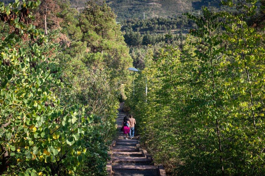 De la colline Mtatsminda à Narikala, Tbilissi