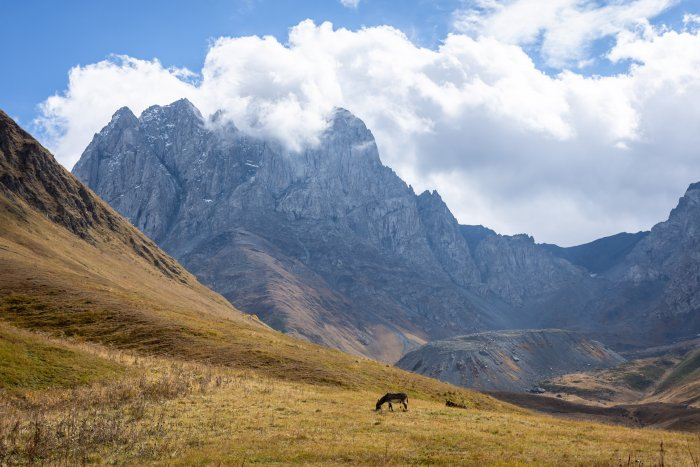 Mont Chaukhi dans la vallée de Sno, Kazbegi, Géorgie