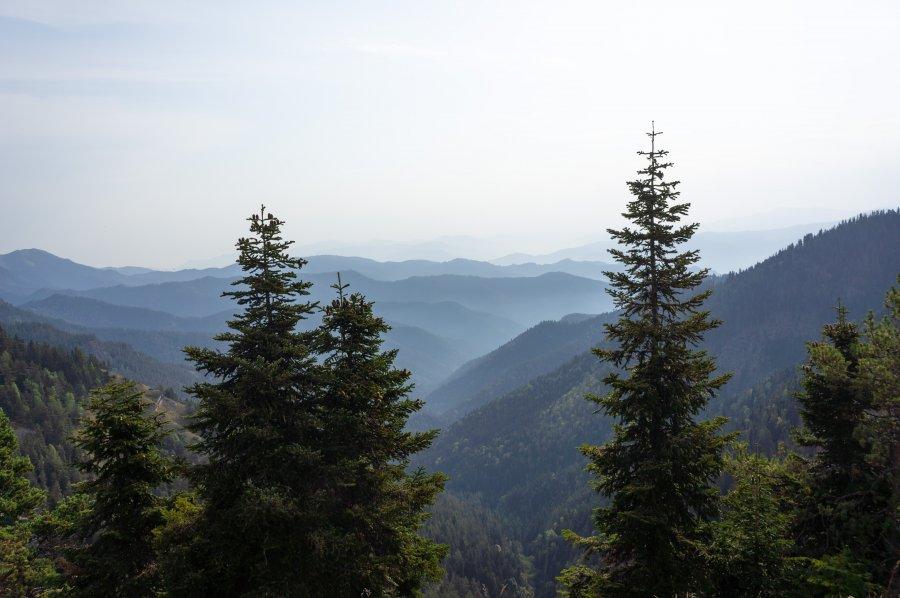 Panorama trail, Borjomi-Kharagauli, Géorgie