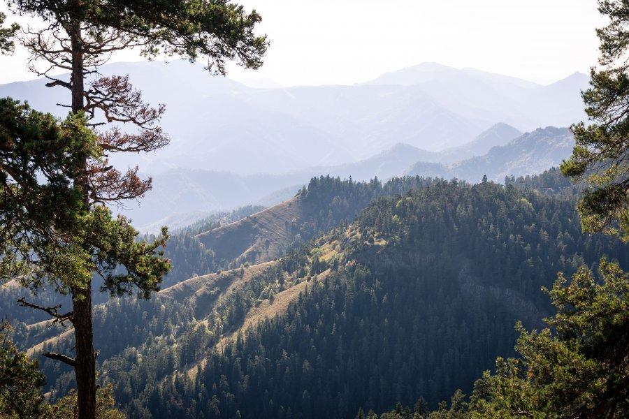 Paysage de montagne à Borjomi, Géorgie
