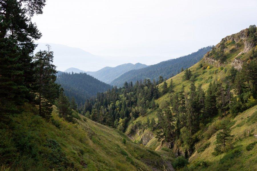 Randonnée dans le parc national de Borjomi, Géorgie