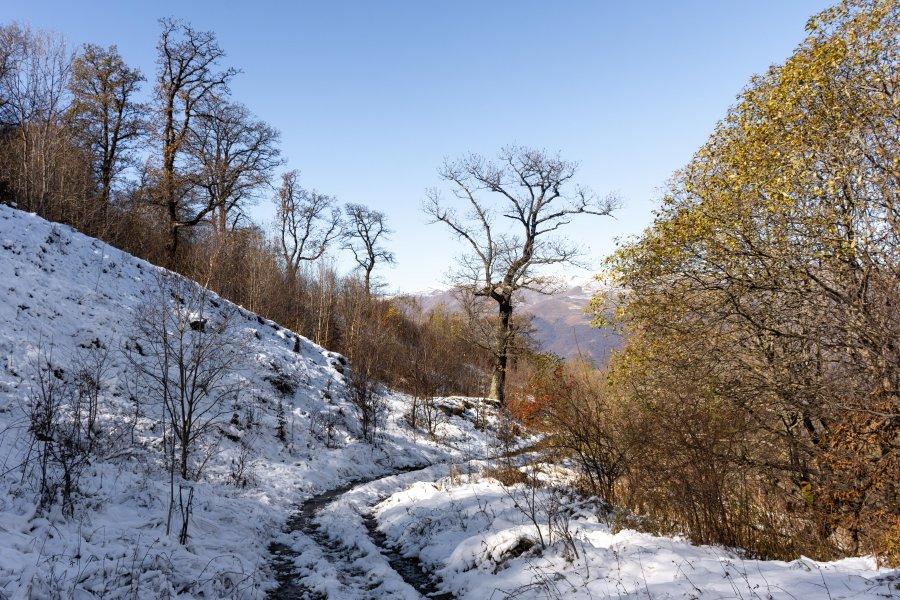 Neige sur le parc national de Dilijan, Arménie