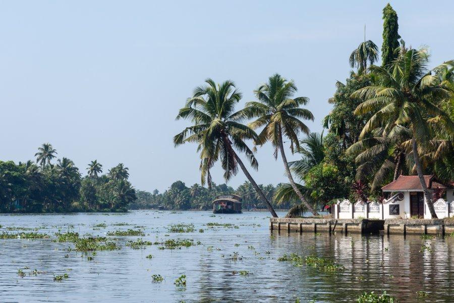 Les backwaters d'Alappuzha, Kerala, Inde du sud