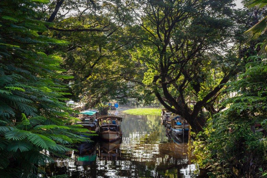 Canal d'Alleppey, Backwaters du Kerala, Inde du sud