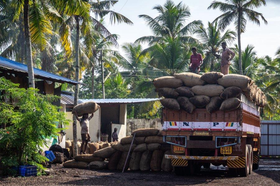 Fabrique de noix de cajou à Munroe, Inde