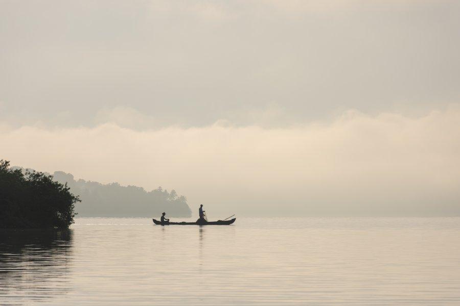 Lever de soleil sur les backwaters du Kerala, Inde