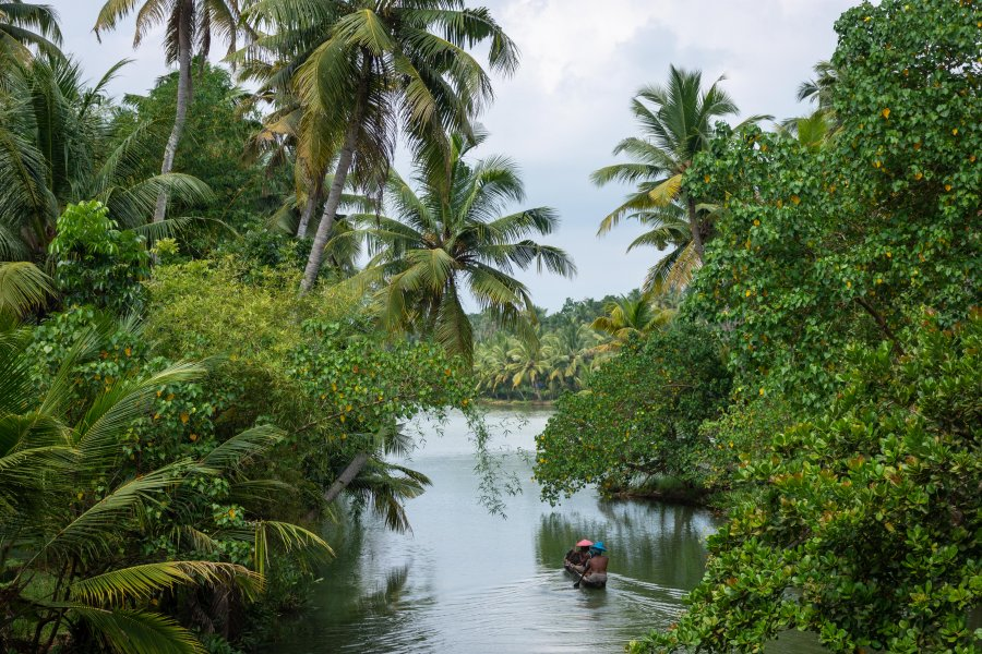 Backwaters de Munroe Island, Kerala, Inde