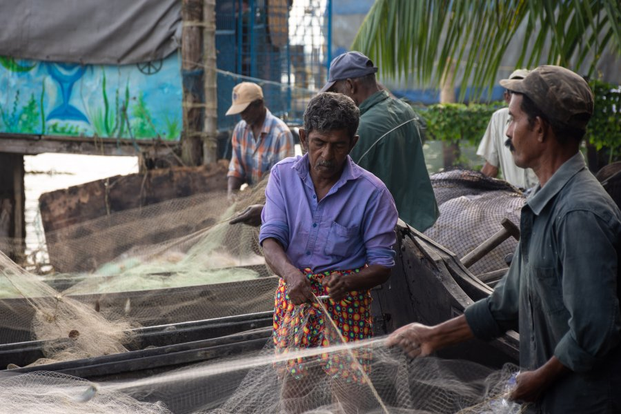 Pêcheurs à Cochin, Kerala, Inde du Sud