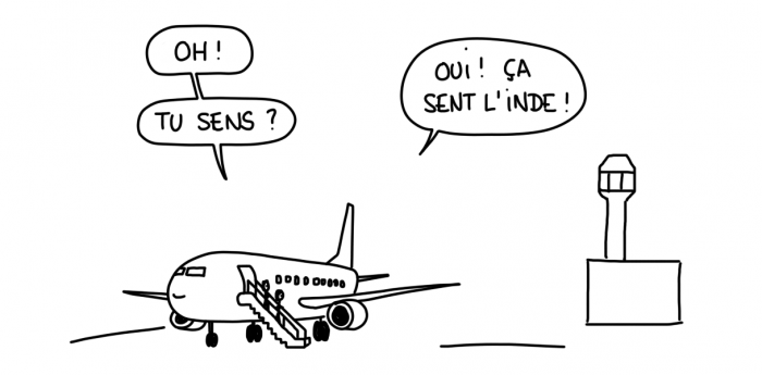 Dessin : descente d'avion en Inde