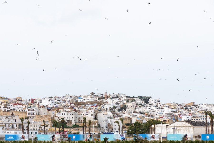 Vue sur la médina de Tanger, Maroc