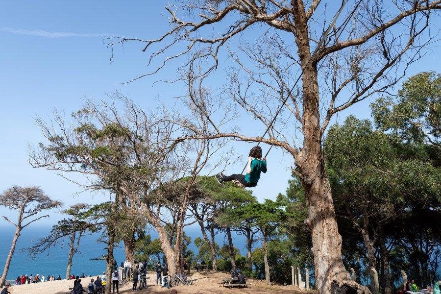 Balançoire dans les arbres au parc Perdicaris