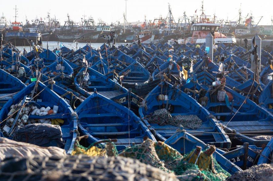 Bateaux au port d'Essaouira